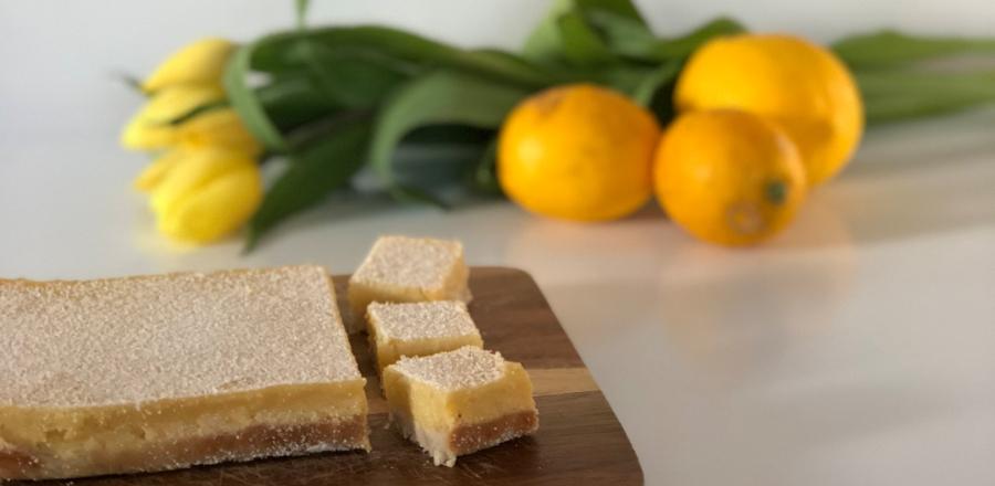 Lemon Slice Bridget Young